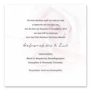 Μοντέρνα Ροζ Τριαντάφυλλα με Βέρες