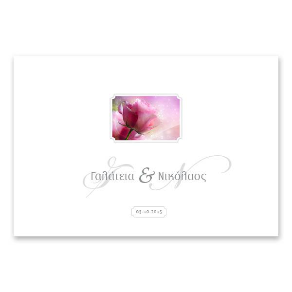 Κλασικό Ροζ Τριαντάφυλλο
